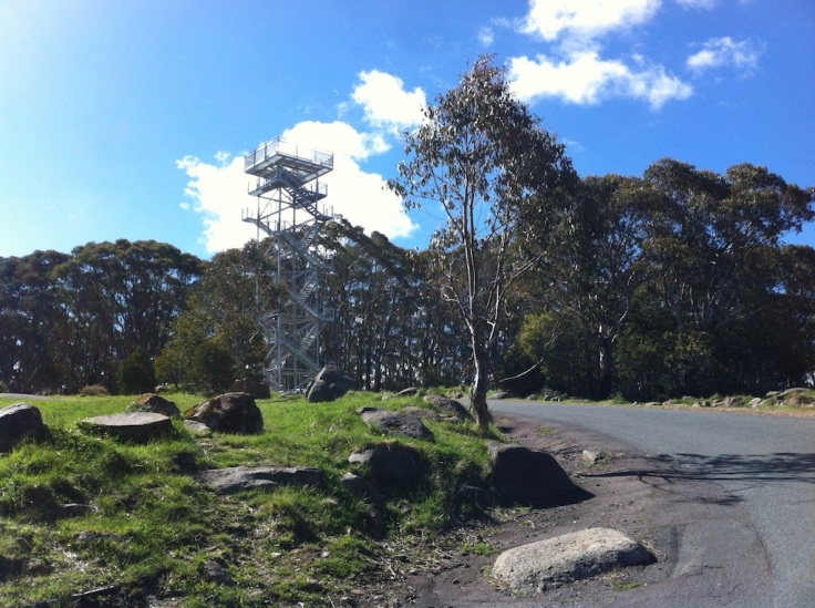 Mt.-Donna-Buang-summit