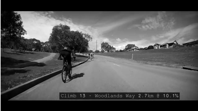 c13 woodlands