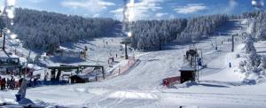 esqui-sistema-iberico-Valdellinares100_0384-c.jpg_369272544