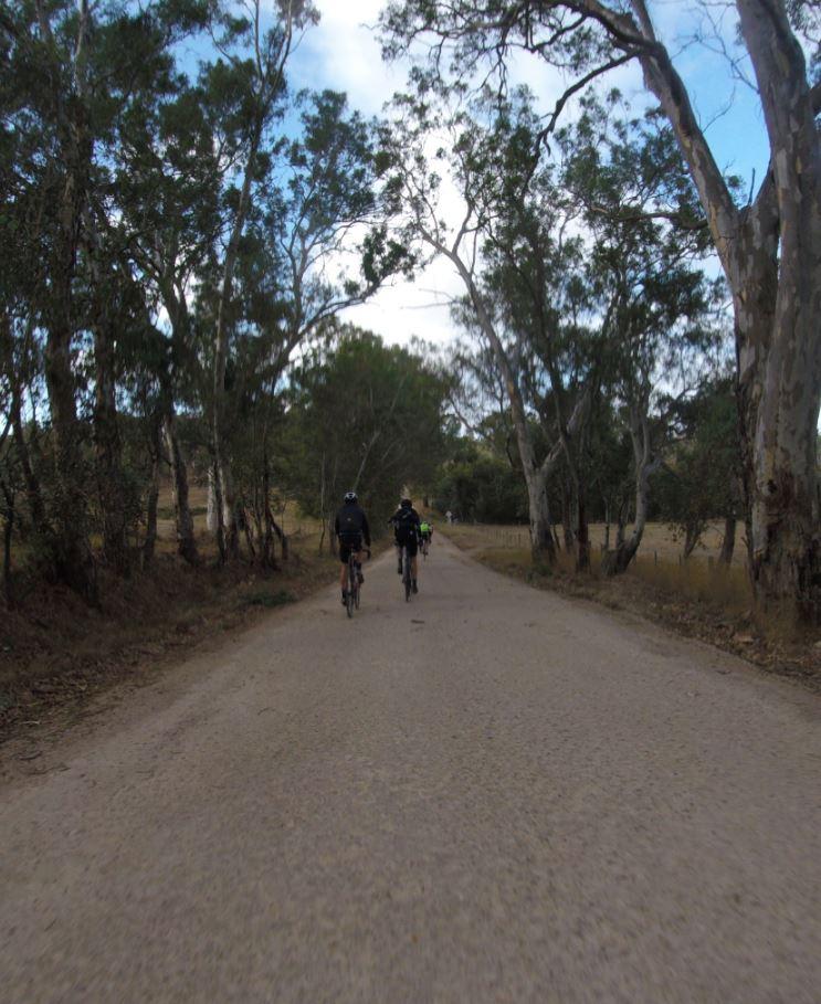 Stelvio Comes To Adelaide Wednesday Legs